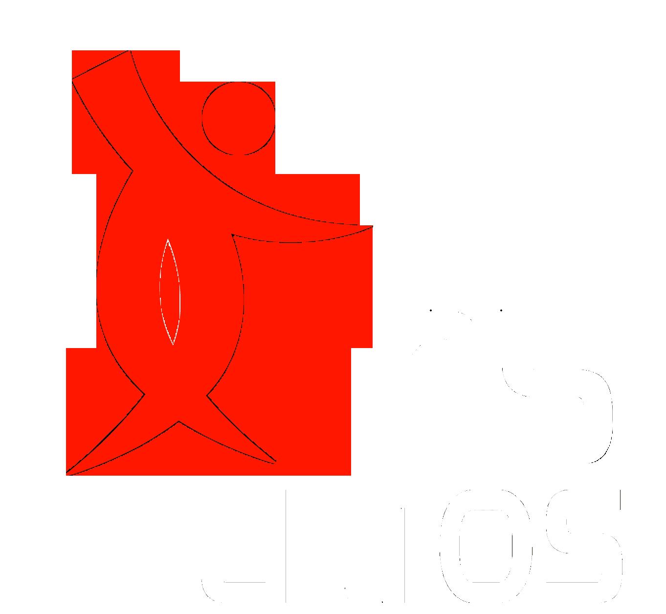 THUMOS Challenge 2015